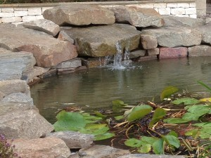 Ponds Stroud